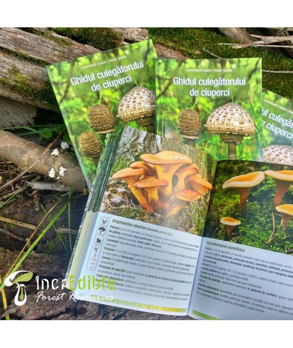 Ghidul culegatorului de ciuperci - o carte ce prezinta cele mai importante specii de ciuperci - interior