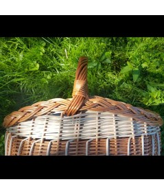 incredible-cos ciuperci oval bicolor-lacuit-rachita-impletita-detaliu maner