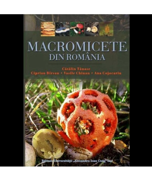 Macromicete din Romania - 353 specii - coperta prezentare